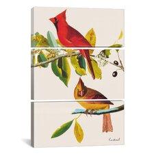 John James Audubon Cardinal 3 Piece on Canvas Set