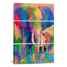 Richard Wallich Elephant 3 Piece on Canvas Set