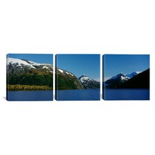 Photography National Forest, Near Anchorage, Alaska 3 Piece on Canvas Set