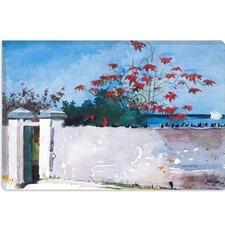 """A Wall, Nassau 1898"" Canvas Wall Art by Winslow Homer"