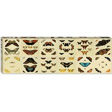 "<strong>iCanvasArt</strong> ""Butterflies 12 Piece Plate Collection"" Canvas Wall Art by Cramer and Stoll"