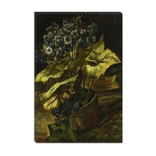 """Cineraria in a Flowerpot"" Canvas Wall Art by Vincent van Gogh"