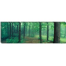 <strong>iCanvasArt</strong> Chestnut Ridge Park, Orchard Park, New York State Canvas Wall Art
