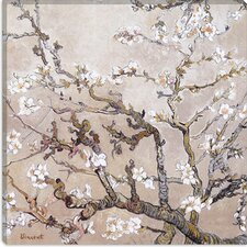 """Almond Branches in Bloom, San Remy, C.1890"" Canvas Wall Art by Vincent van Gogh"