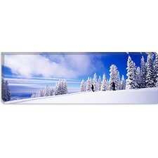 <strong>iCanvasArt</strong> Steamboat Springs, Colorado Canvas Wall Art