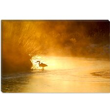 "<strong>iCanvasArt</strong> ""Glowing Mist"" Canvas Wall Art by Dan Ballard"