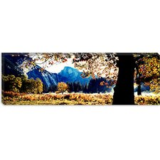 Half Dome, Yosemite National Park, California Canvas Wall Art