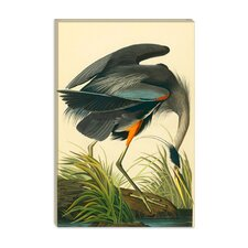 """Great Heron"" Canvas Wall Art by John James Audubon"