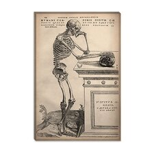 "<strong>iCanvasArt</strong> ""De Humani Corporis Fabrica Skeleton Standing"" Canvas Wall Art by Vesalius"