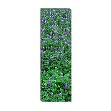 <strong>iCanvasArt</strong> High Angle View of Plants, Bluebonnets, Austin, Texas Canvas Wall Art