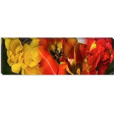 <strong>iCanvasArt</strong> Close-up of Tulips Canvas Wall Art