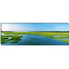 Sea Grass in The Sea, Atlantic Coast, Jacksonville, Florida Canvas Wall Art