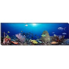 School of Fish Swimming in the Sea Canvas Wall Art