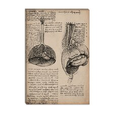 """Sketchbook Studies of Human Organs"" Canvas Wall Art by Leonardo da Vinci"