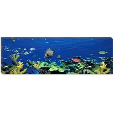 <strong>iCanvasArt</strong> School of Fish Swimming in the Sea, Digital Composite Canvas Wall Art