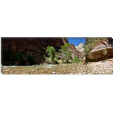 North Fork of the Virgin River, Zion National Park, Utah Canvas Wall Art