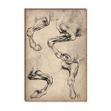 """Leonardo's Horse"" Canvas Wall Art by Leonardo Da Vinci"
