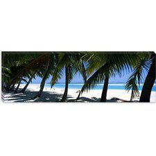 <strong>iCanvasArt</strong> Palm Trees on the Beach, Aitutaki, Cook Islands Canvas Wall Art