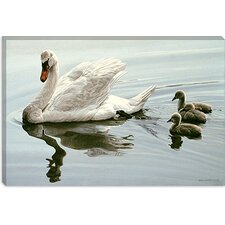 "<strong>iCanvasArt</strong> ""Mute Swan and Three Cygnets"" Canvas Wall Art by Ron Parker"