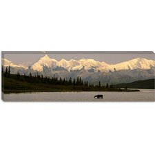 Wonder Lake, Denali National Park, Alaska Canvas Wall Art
