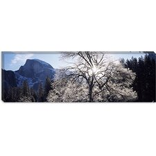 <strong>iCanvasArt</strong> Yosemite National Park, California Canvas Wall Art