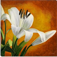"<strong>iCanvasArt</strong> ""White Tulip"" Canvas Wall Art by Pablo Esteban"