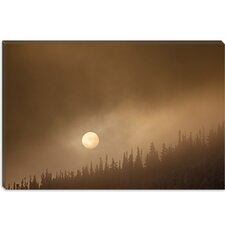 "<strong>iCanvasArt</strong> ""Wild Moon ll"" Canvas Wall Art by Dan Ballard"