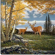 "<strong>iCanvasArt</strong> ""Woodland Meadows"" Canvas Wall Art by John Van Straalen"
