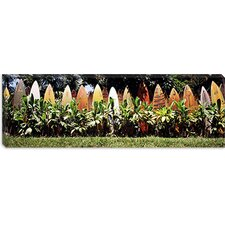 <strong>iCanvasArt</strong> Surfboard Fence in a Garden, Maui, Hawaii Canvas Wall Art