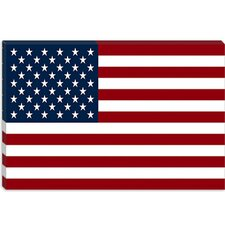 <strong>iCanvasArt</strong> U.S.A. Flag, Regular Canvas Wall Art