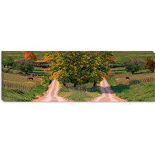 Two Dirt Roads Passing Through Farms in Autumn Canvas Wall Art