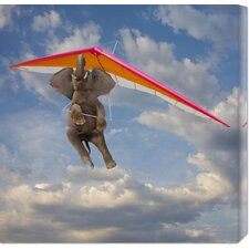 'Flying Elephant' by John Lund Stretched Canvas Art