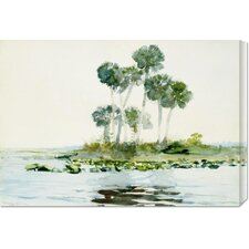 'St. Johns River, Florida' by Winslow Homer Painting Print on Canvas