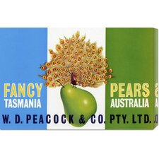 'Peacock Pears' by Retrolabel Stretched Canvas Art