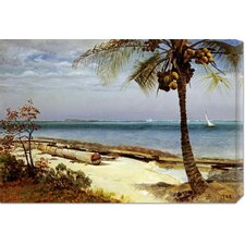 'Tropical Coast' by Albert Bierstadt Painting Print on Canvas