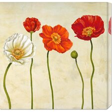 'Coquelicots' by Cynthia Ann Stretched Canvas Art