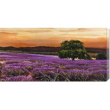 <strong>Bentley Global Arts</strong> 'Campo di lavanda' by Valerio Sella Stretched Canvas Art