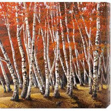 'Bosco di Betulle I' by Adriano Galasso Stretched Canvas Art