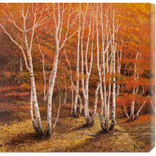 'Bosco di Betulle II' by Adriano Galasso Painting Print on Canvas