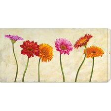 <strong>Bentley Global Arts</strong> 'Gerberas' by Cynthia Ann Stretched Canvas Art