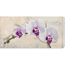 'Royal Orchid' by Elena Dolci Stretched Canvas Art