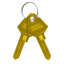 Blank Key for Standard Locks of Americana Mailboxes (Set of 50)