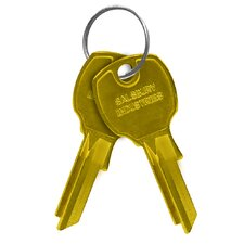 Cluster Box Unit Key Blanks (Set of 50)
