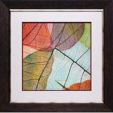 <strong>North American Art</strong> Colorful Leaves II Wall Art