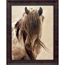'Freedom' by Lisa Dearing Framed Photographic Print