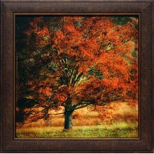 'Resting Place' by Danny Head Framed Painting Print