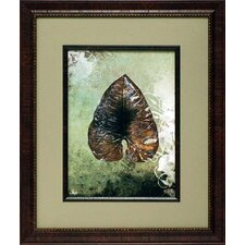 'Dry Leaf II' by Patricia Pinto Framed Painting Print