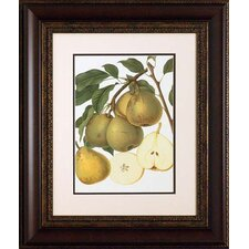 <strong>North American Art</strong> Pear Varieties I Wall Art