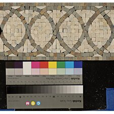 "12"" x 6"" Stone Mosaic Liner Tile in Amber Gold/Chinese Multicolor"