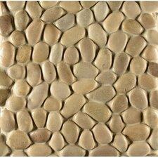 Hemisphere Pebble Stone Glazed Mosaic Tile in Antigua